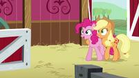 Pinkie and AJ walk backwards S5E11
