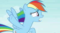 """Rainbow Dash """"slow down the breeze"""" S4E16.png"""