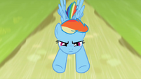 Rainbow Dash fly by S2E8