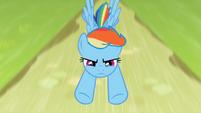 Rainbow Dash fly by S2E8