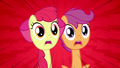 Scootaloo and Apple Bloom 'No!' S3E4.png
