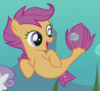 Scootaloo seapony ID S8E6