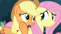 "Applejack ""I've got a bad feeling about this"" S4E18"