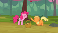 Applejack begging Pinkie Pie for mercy S2E14.png