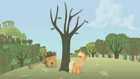 Applejack hitting a dead tree S01E04