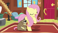 "Fluttershy ""I need everypony to respect mine"" S7E5.png"