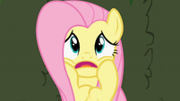 Fluttershy scared by isolation S2E01