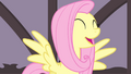 Fluttershy singing happily S4E14.png