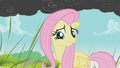 Fluttershy takes that as a yes S01E07.png