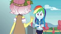 Rainbow Dash listening to Vignette EGROF