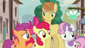 """Scootaloo """"I don't think Big Mac's ready to leave"""" S7E8.png"""