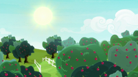 Sun shining over Sweet Apple Acres S8E18