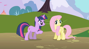 592px-Twilight and Fluttershy1 S1E01