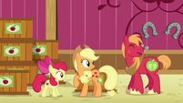 AJ, Apple Bloom, and Big Mac hear Granny laughing S6E23