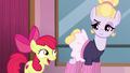 "Apple Bloom ""sounds an awful lot like friendship"" S6E4.png"