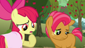 Apple Bloom 'Guess what we're tryin' to say is' S3E04.png