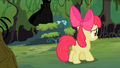 Apple Bloom following S2E06.png