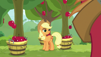 Applejack fills three buckets at once S9E10