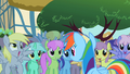 Derpy Rainbow Dash 3 S2E08.png
