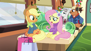 "Fluttershy ""gifts for Spike or Rainbow Dash"" MLPBGE"