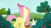 Fluttershy 'Oh Pinkie Pie' S3E3