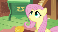 Fluttershy stares at the sprinkling sand S6E17