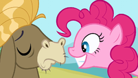 Pinkie Pie well...smile S2E18