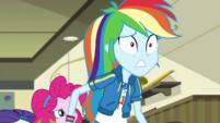 Rainbow Dash panicked at Zephyr's arrival EGDS5