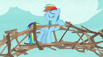 Rainbow leaning on her branch bridge S8E9