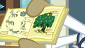 Textbook illustrations of Swamp Fever stages S7E20.png