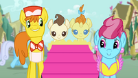 The Cake family in Ponyville S4E12