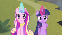 Twilight and Cadance looking serious S4E11