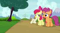 Apple Bloom and Scootaloo feel bad for Sweetie Belle S7E6