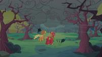 Applejack and Big McIntosh looking at dark clouds S2E12