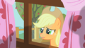 Applejack peering through window 5 S01E18.png