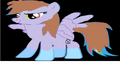 FANMADE Blossomleader456 as pony.png