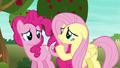 """Fluttershy """"most ponies have never even heard of"""" S6E18.png"""