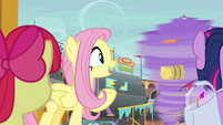 "Fluttershy ""they are very rare"" S9E22"