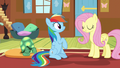 Fluttershy ensures Rainbow that Tank's fine S5E5.png