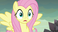 Fluttershy shocked at Garble's remark S9E9