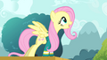 Fluttershy singing her heart out S4E14.png