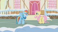 Fluttershy telling Rainbow Dash the animals' homes will flood S1E11