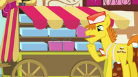 "Mr. Cake ""Maybe I should hire somepony to be my backup delivery pony"" S5E19"