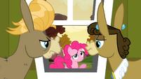 Pinkie Pie's sorry S2E18