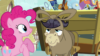 Pinkie Pie Make Friends With YOU S02E18