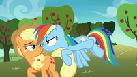"Rainbow ""a bunch of old, slow grannies!"" S8E5"