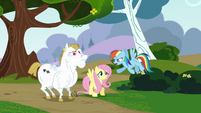 Rainbow 'all four hooves off the ground' S4E10