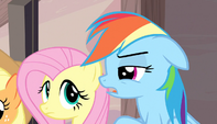 "Rainbow Dash ""you think?"" S5E1"