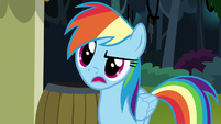 Rainbow Dash -how do you know-- S7E18