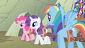 Rainbow Dash all those dogs S1E19.png